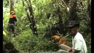 "BABI VS ANJING (akumassa Padangpanjang | 2009 | 13' 34"" | Subteks Indonesia)"