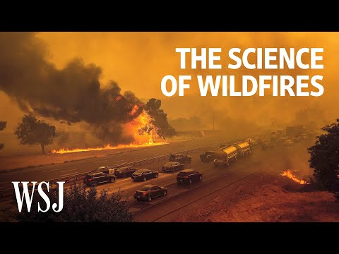 The Science of Wildfires: Why They're Getting Worse   WSJ