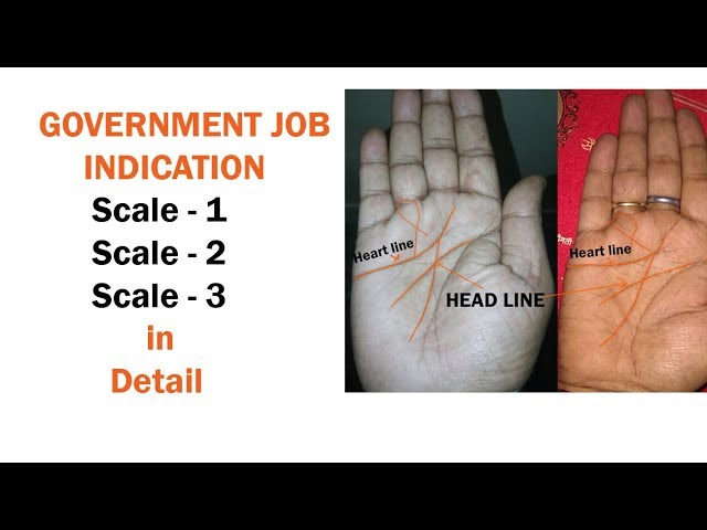 ????? ?? ??? ????? ???? ?? ?????? ????? | government job indication | palm reading guide