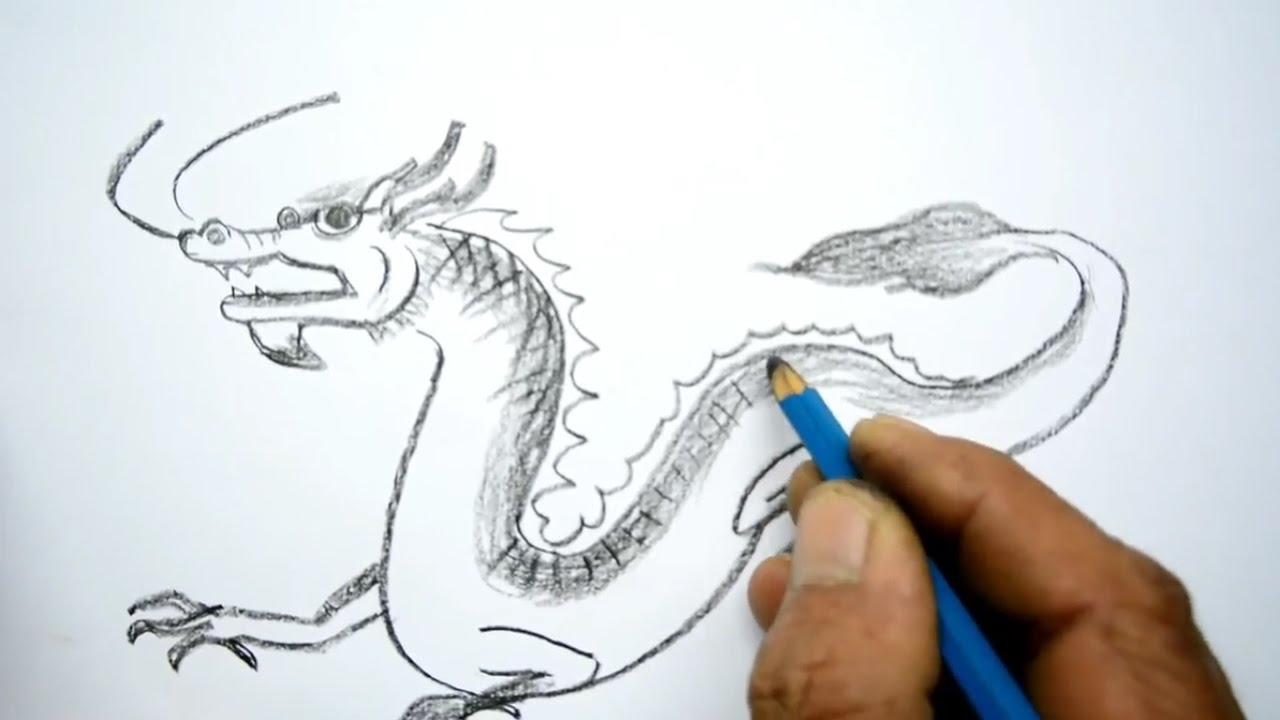 Chinese Dragon Sketch