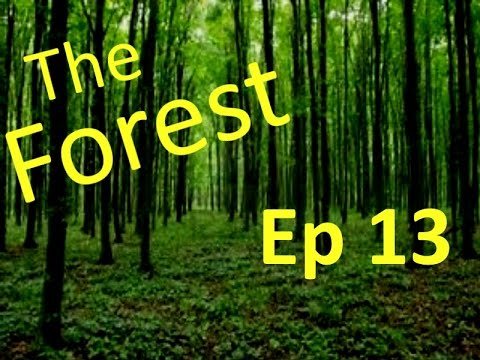 The Forest #13: I'm a fool!