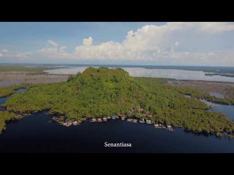 King Of Borneo Band -  Heart Of Borneo (Video Lyric )