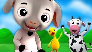 Bebê Cabra | Rima De Berçário | Miúdos Canções | Baby Goat | Kids Baby Club Portuguese