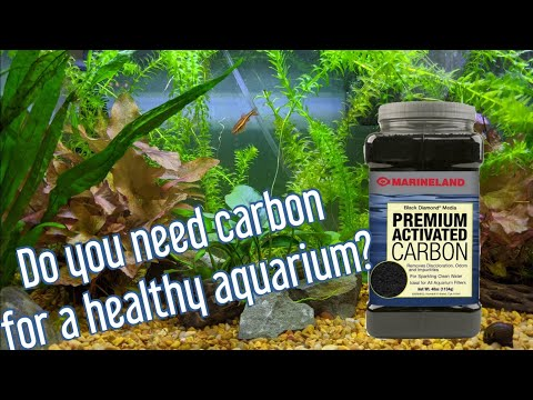 Activated Carbon - Is It Needed?