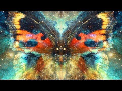 تأثير الفراشة | نظرية الفوضى 🦋