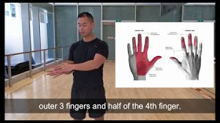 Median nerve slider