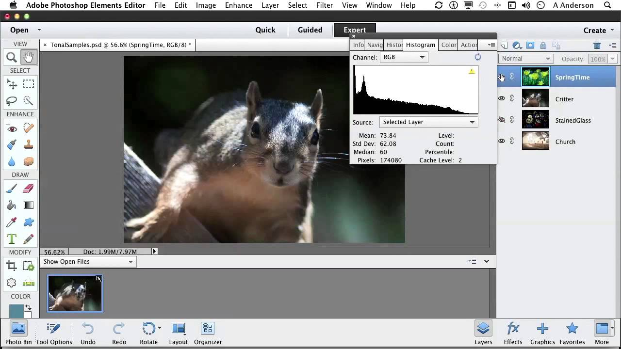 Photoshop elements 11 tutorial working with tonal and color photoshop elements 11 tutorial working with tonal and color correction youtube baditri Gallery