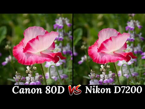 Canon EOS 80D VS Nikon D7200 DSLR Camera Comparison, DSLR Camera Review, Features, Overview