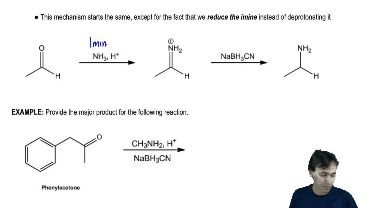 efficiencies of reductive amination reactions on A review on the use of sodium triacetoxyborohydride in the reductive amination of ketones and aldehydes  for reductive amination reactions, some modifications and.