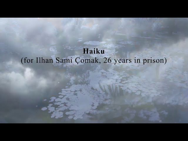 haiku(for Ilhan Sami Çomak, 26 years in prison)