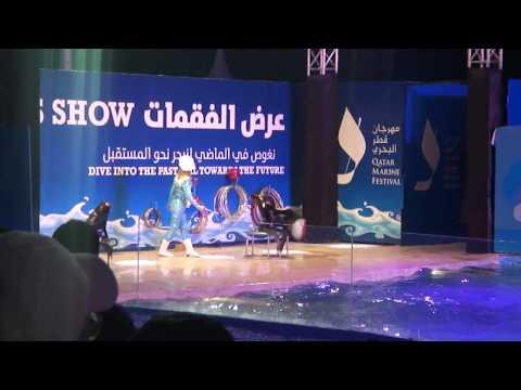 Exploring Doha: Qatar Marine Festival 2011: Seals Show