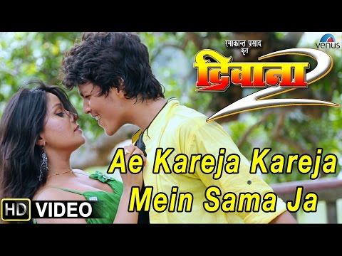 Ae Kareja, Kareja Mein Sama Ja Video Song   Deewana 2   Bhojpuri Film