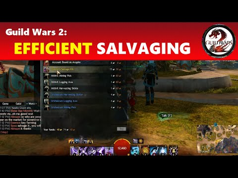 Guild Wars 2: Salvage More Efficiently (250 Uses!)