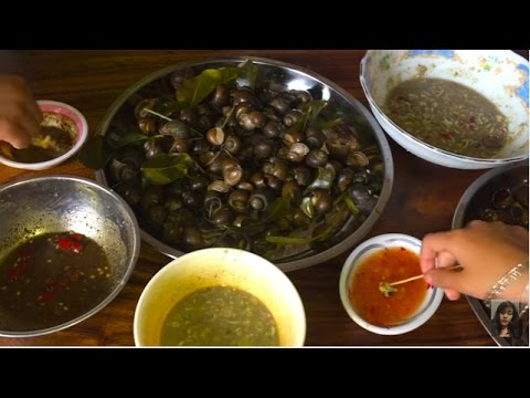 Cambodian Snack, cooking snail eat with grill fish paste, pepper and salt sauce, spicy sauces
