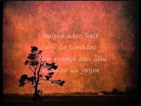 Somali Lyrics   Karaoke   Arji   By You