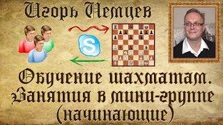 Мини-группа из двух учеников. Упражнения на выбор взятия. Обучение шахматам. Игорь Немцев