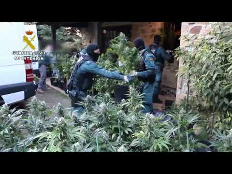 Desarticulado un grupo criminal dedicado al tráfico de speed, cocaína en Cantabria y Vizcaya