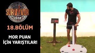 Survivor 2018   18.Bölüm   Mor Puan İçin Yarıştılar!