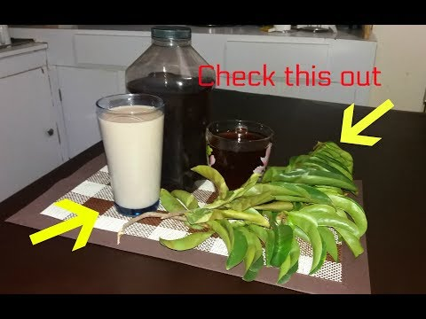 Benefits of Soursop Leaf tea