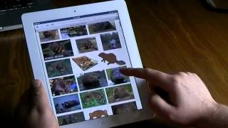 Top Helpful Tips of New iPad 3 For Beginners 2012 (HD)