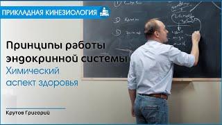 ПРИНЦИПЫ РАБОТЫ ЭНДОКРИННОЙ СИСТЕМЫ. Крутов Г. М.