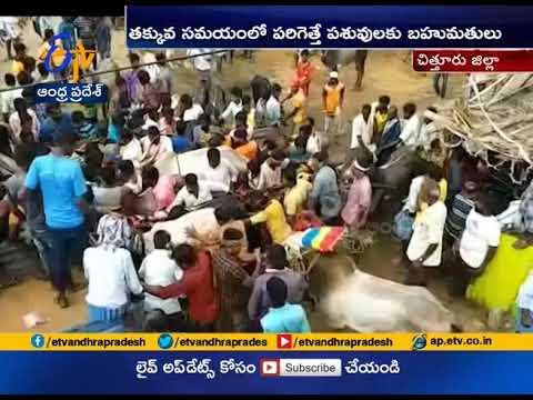 Bull Festival Grandly Held @ Kenamakula Palli of Chittoor Dist