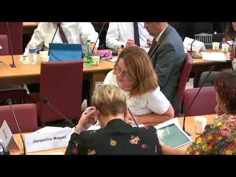 Commission des affaires étrangères : Ambassadeur du Royaume-Uni en France