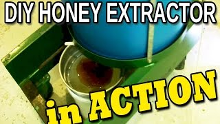 DIY honey EXTRACTOR in action. Homemade electric four frame spinner beekeeping 101