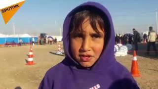 بالفيديو ..طفل عراقي شاهد على رجم