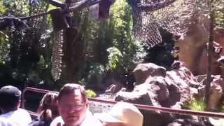 (Disneyland) Jungle Cruise On Ride (HD POV) Full Boat Tour Disneyland California
