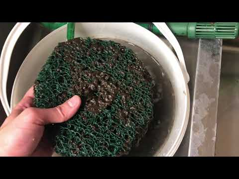 Eheim 2217 Canister Cleaning, Tips, & Tricks