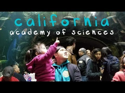 agustin life. [episode 18] | california academy of sciences
