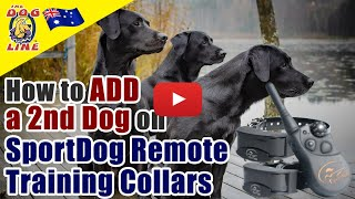 How to Add a second Dog on SportDog Remote Training Collars