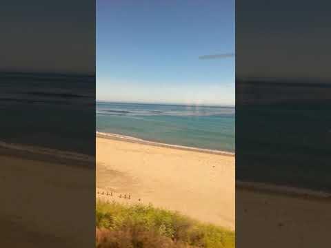 Amtrak Coast Starlight near beach