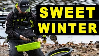 SWEET Baits for WINTER Match Fishing Q A Session