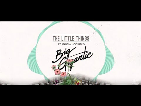 Big Gigantic - The Little Things ft. Angela McCluskey (Official Lyric Video)