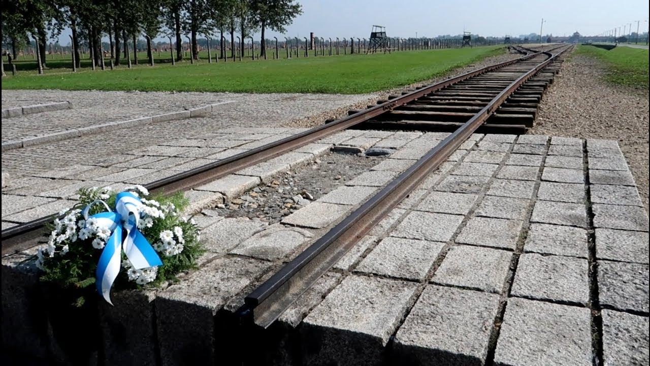 #767 BIRKENAU : Auschwitz II TOUR - The Disturbing