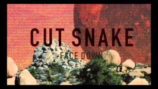 Cut Snake - Face Down [Animated Video]
