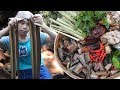 Satisfying girl Cooking Yummy Hot Chili Fry Eel Recipe in the Jungle