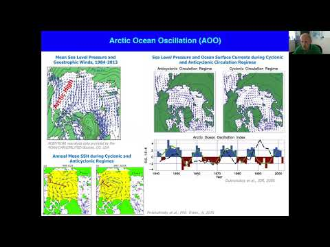 The Role of Fresh Water in a Changing Arctic Climate // Dmitry Dukhovskoy