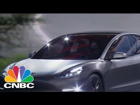 Tesla In Bear Market Territory, No Problem: Pro | CNBC