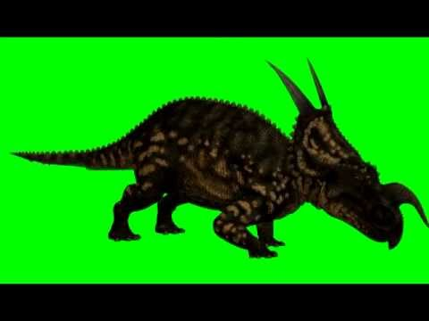 Moving Animations Of Dinosaurs | www.pixshark.com - Images ...