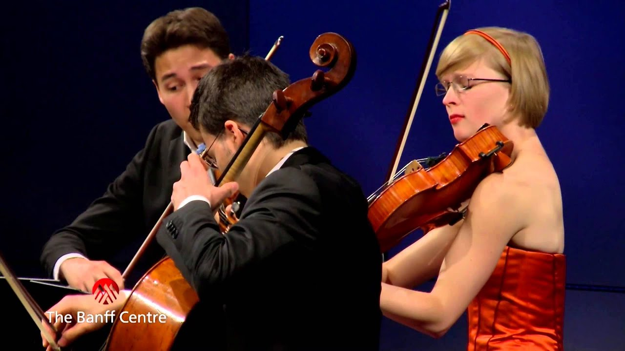 Download BISQC 2013 - Schumann String Quartet - Joseph Haydn Quartet in G Major