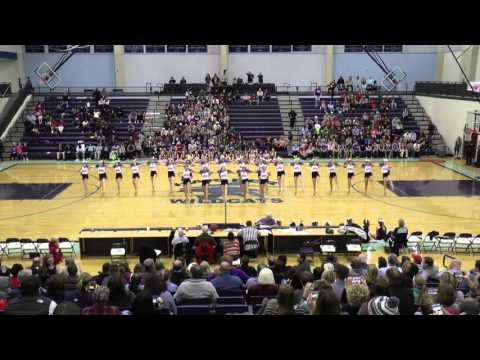 Harber Silver Stars Bball DCC POM