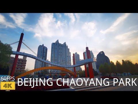 【4K 60fps】Walking in Beijing Chaoyang Park Autumn   北京朝阳公园散步