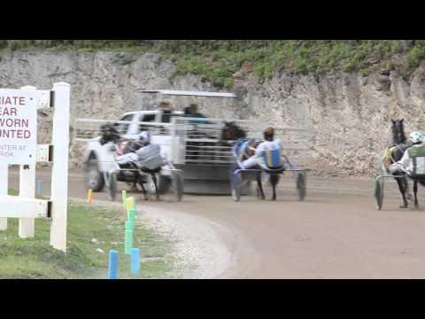 Harness Pony Racing Bermuda November 13 2011