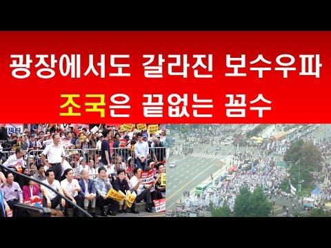 [송국건의 혼술] 조국의 끝없는 꼼수, 광장에는 갈라진 보수우파