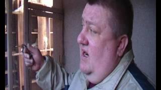 Херсонский клуб голубеводов.Голуби Александра Крюкова ч.(2).