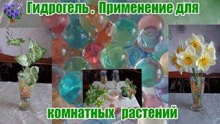 Гидрогель для комнатных растений. Как пользоваться для укоренения и если едете в отпуск