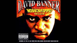 Watch David Banner So Trill video